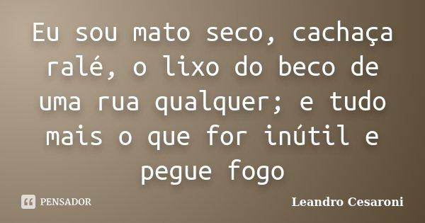 Eu Sou Um Poeta: Eu Sou Mato Seco, Cachaça Ralé, O Lixo... Leandro Cesaroni