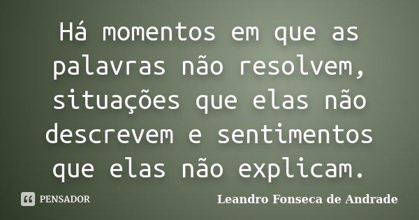 Há momentos em que as palavras não resolvem, situações que elas não descrevem e sentimentos que elas não explicam.... Frase de Leandro Fonseca de Andrade.