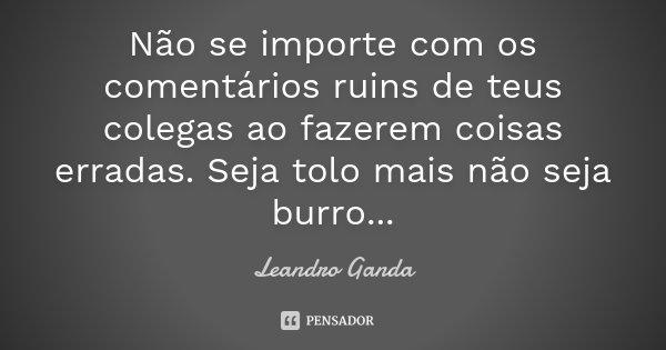 Não se importe com os comentários ruins de teus colegas ao fazerem coisas erradas. Seja tolo mais não seja burro ...... Frase de Leandro Ganda.