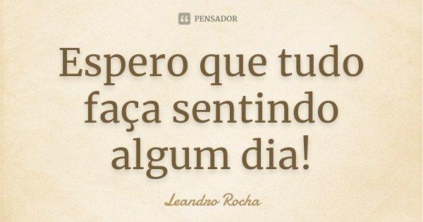 Espero que tudo faça sentindo algum dia!... Frase de Leandro Rocha.