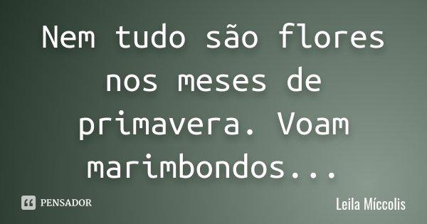 Nem tudo são flores nos meses de primavera. Voam marimbondos...... Frase de Leila Míccolis.