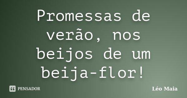 Promessas de verão, nos beijos de um beija-flor!... Frase de Léo Maia.