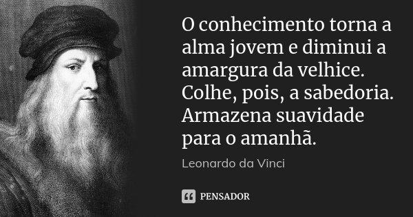 O conhecimento torna a alma jovem e diminui a amargura da velhice. Colhe, pois, a sabedoria. Armazena suavidade para o amanhã.... Frase de Leonardo da Vinci.