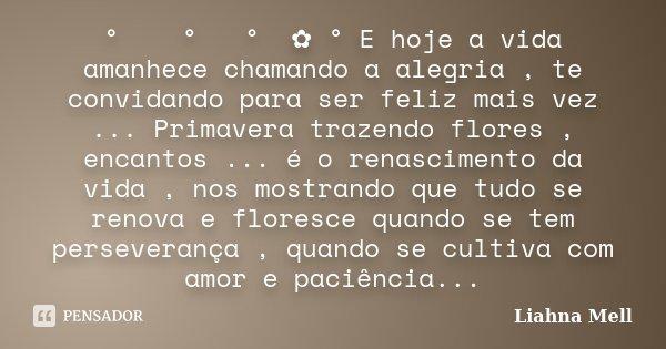 ° ೋ✿ ° ♡ ° ೋ✿ ° E hoje a vida amanhece chamando a alegria , te convidando para ser feliz mais vez ... Primavera trazendo flores , encantos ... é o renascimento ... Frase de Liahna Mell.