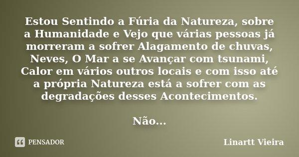 Estou Sentindo A Fúria Da Natureza Linartt Vieira