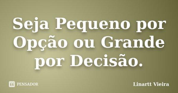 Seja Pequeno por Opção ou Grande por Decisão.... Frase de Linartt Vieira.