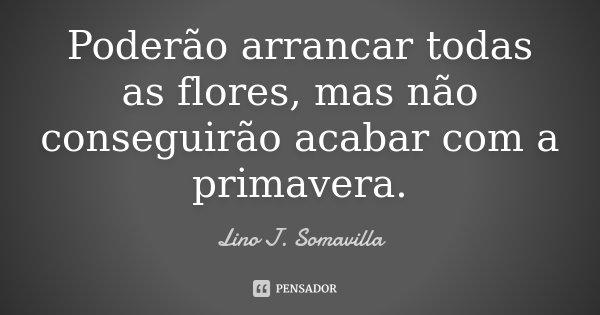 Poderão arrancar todas as flores, mas não conseguirão acabar com a primavera.... Frase de Lino J. Somavilla.