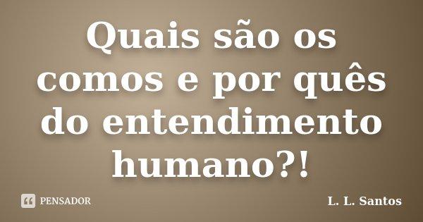 Quais são os comos e por quês do entendimento humano?!... Frase de L. L. Santos.