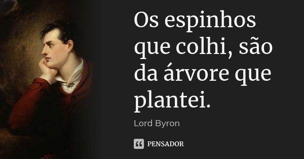 Os espinhos que colhi, são da árvore que plantei.... Frase de Lord Byron.