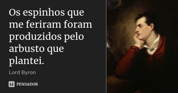 10 Frases Que Você Deveria Adotar Como Lema No Dia A Dia: Os Espinhos Que Me Feriram Foram... Lord Byron