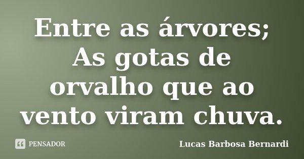 Entre as árvores; As gotas de orvalho que ao vento viram chuva.... Frase de Lucas Barbosa Bernardi.