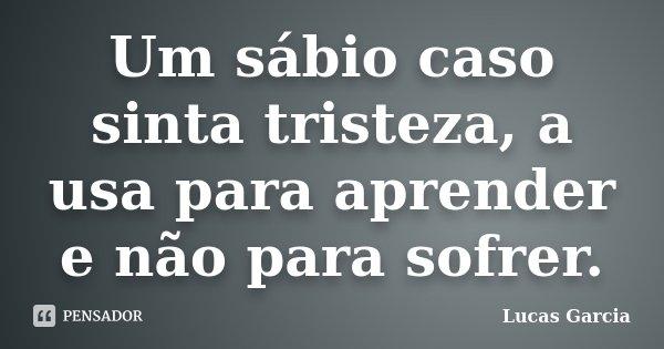 Um sábio caso sinta tristeza, a usa para aprender e não para sofrer.... Frase de Lucas Garcia.