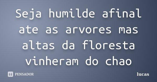 Seja humilde afinal ate as arvores mas altas da floresta vinheram do chao... Frase de Lucas.