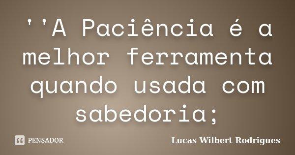 ''A Paciência é a melhor ferramenta quando usada com sabedoria;... Frase de Lucas Wilbert Rodrigues.