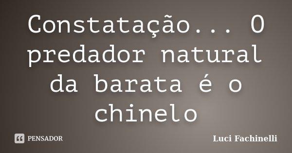 Constatação... O predador natural da barata é o chinelo... Frase de Luci Fachinelli.