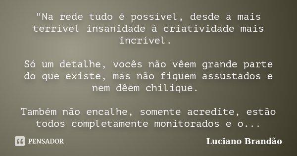 """""""Na rede tudo é possível, desde a mais terrível insanidade à criatividade mais incrível. Só um detalhe, vocês não vêem grande parte do que existe, mas não ... Frase de Luciano Brandão."""