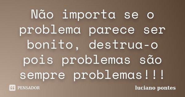 Não importa se o problema parece ser bonito, destrua-o pois problemas são sempre problemas!!!... Frase de Luciano Pontes.