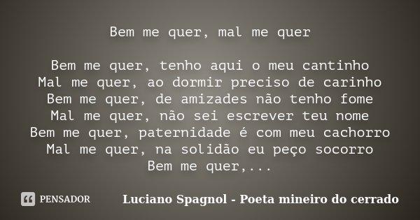 Bem Me Quer Mal Me Quer Bem Me Quer Luciano Spagnol Poeta