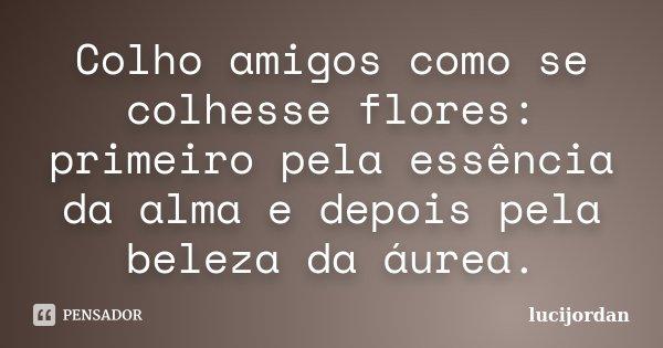 Colho amigos como se colhesse flores: primeiro pela essência da alma e depois pela beleza da áurea.... Frase de lucijordan.