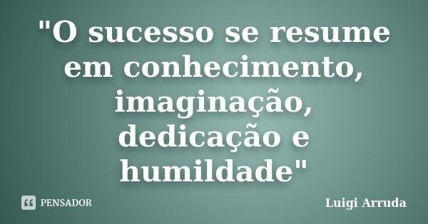 """""""O sucesso se resume em conhecimento, imaginação, dedicação e humildade""""... Frase de Luigi Arruda."""