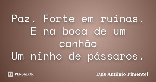 Paz. Forte em ruínas, E na boca de um canhão Um ninho de pássaros.... Frase de Luís Antônio Pimentel.
