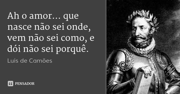 Ah o amor... que nasce não sei onde, vem não sei como, e dói não sei porquê.... Frase de Luís de Camões.