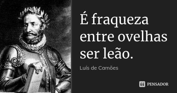 É fraqueza entre ovelhas ser leão.... Frase de Luís de Camões.