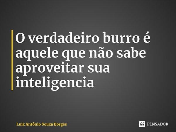 O verdadeiro burro é aquele que não sabe aproveitar sua inteligencia... Frase de Luiz Antônio Souza Borges.