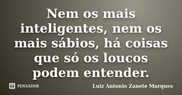 Nem os mais inteligentes, nem os mais sábios, há coisas que só os loucos podem entender.... Frase de Luiz Antonio Zanete Marques.