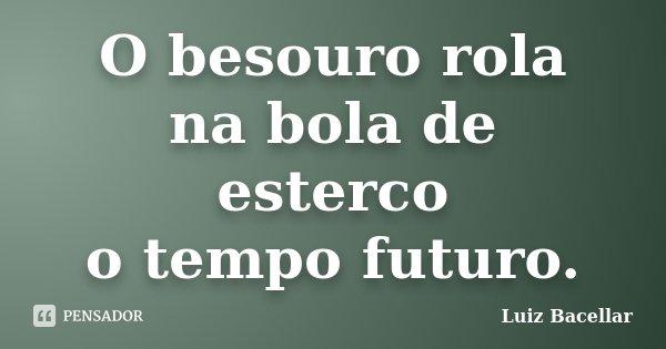 O besouro rola na bola de esterco o tempo futuro.... Frase de Luiz Bacellar.