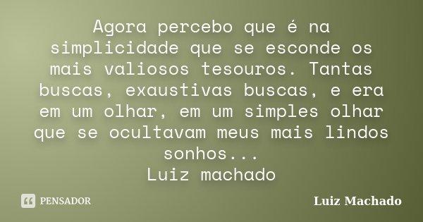 Agora percebo que é na simplicidade que se esconde os mais valiosos tesouros. Tantas buscas, exaustivas buscas, e era em um olhar, em um simples olhar que se oc... Frase de Luiz Machado.
