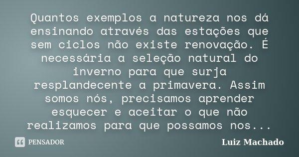 Quantos exemplos a natureza nos dá ensinando através das estações que sem ciclos não existe renovação. É necessária a seleção natural do inverno para que surja ... Frase de Luiz Machado.