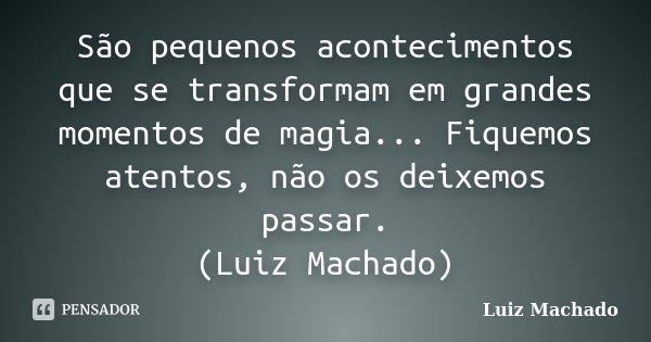 São pequenos acontecimentos que se transformam em grandes momentos de magia... Fiquemos atentos, não os deixemos passar. (Luiz Machado)... Frase de Luiz Machado.