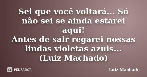 Sei que você voltará... Só não sei se ainda estarei aqui! Antes de sair regarei nossas lindas violetas azuis... (Luiz Machado)... Frase de Luiz Machado.
