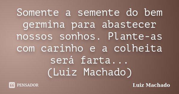 Somente a semente do bem germina para abastecer nossos sonhos. Plante-as com carinho e a colheita será farta... (Luiz Machado)... Frase de Luiz Machado.