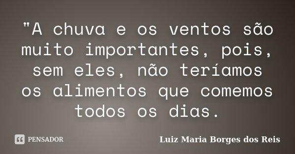 """""""A chuva e os ventos são muito importantes, pois, sem eles, não teríamos os alimentos que comemos todos os dias.... Frase de Luiz Maria Borges dos Reis."""