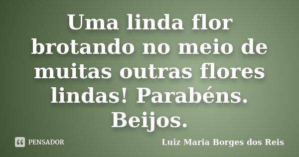 Uma linda flor brotando no meio de muitas outras flores lindas! Parabéns. Beijos.... Frase de Luiz Maria Borges dos Reis.