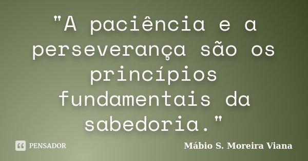 """""""A paciência e a perseverança são os princípios fundamentais da sabedoria.""""... Frase de Mábio S. Moreira Viana."""