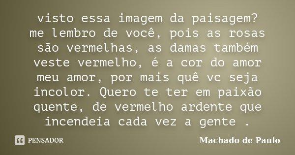 visto essa imagem da paisagem? me lembro de você, pois as rosas são vermelhas, as damas também veste vermelho, é a cor do amor meu amor, por mais quê vc seja in... Frase de Machado de Paulo.