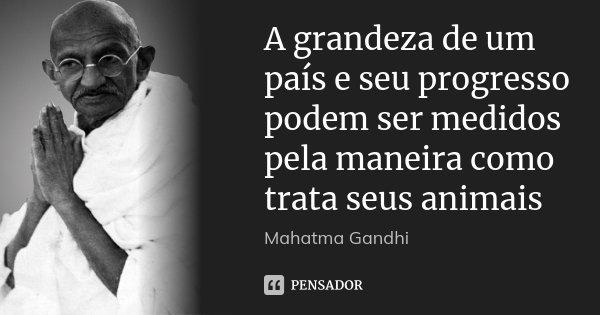 A grandeza de um país e seu progresso podem ser medidos pela maneira como trata seus animais... Frase de Mahatma Gandhi.