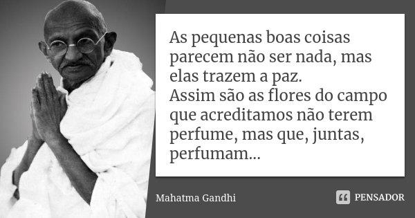 As pequenas boas coisas parecem não ser nada, mas elas trazem a paz. Assim são as flores do campo que acreditamos não terem perfume, mas que, juntas, perfumam..... Frase de Mahatma Gandhi.
