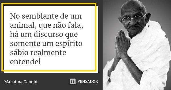 No semblante de um animal, que não fala, há um discurso que somente um espírito sábio realmente entende!... Frase de Mahatma Gandhi.