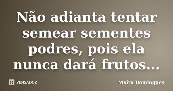 Não adianta tentar semear sementes podres, pois ela nunca dará frutos...... Frase de Maira Domingues.