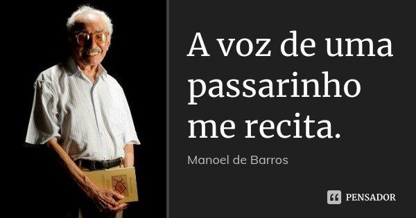 A voz de uma passarinho me recita.... Frase de Manoel de Barros.