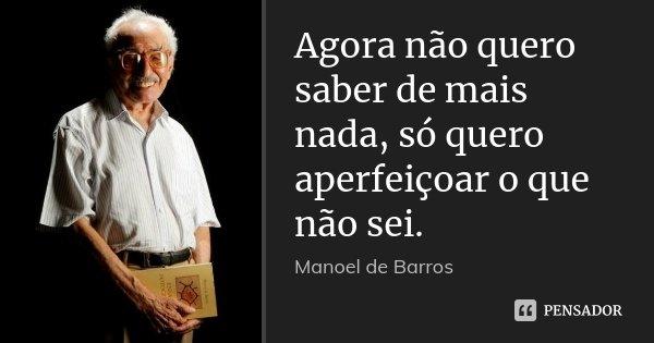 Agora Não Quero Saber De Mais Nada, Só... Manoel De Barros