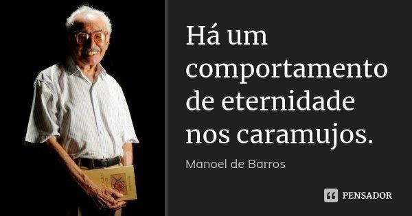 Há um comportamento de eternidade nos caramujos.... Frase de Manoel de Barros.