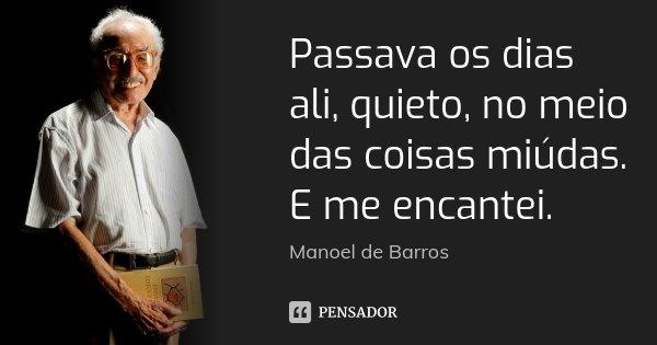 Passava os dias ali, quieto, no meio das coisas miúdas. E me encantei.... Frase de Manoel de Barros.