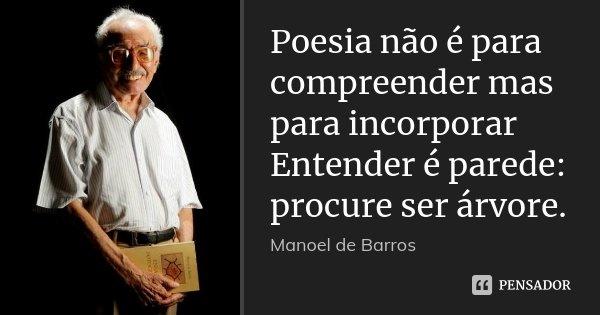 Poesia não é para compreender mas para... Manoel de Barros