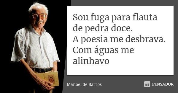 Sou fuga para flauta de pedra doce. A poesia me desbrava. Com águas me alinhavo... Frase de Manoel de Barros.