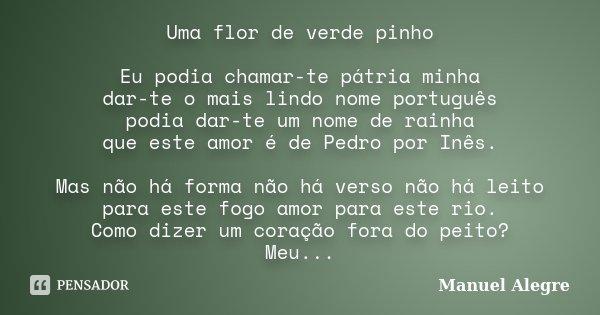 Uma flor de verde pinho Eu podia chamar-te pátria minha dar-te o mais lindo nome português podia dar-te um nome de rainha que este amor é de Pedro por Inês. Mas... Frase de Manuel Alegre.